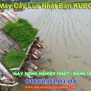 kubota-sp4-may-cay-lua-day-keo-bang-tay-kubota-rainbow-sp-nhat-ban-hang-cu-bai-da-qua-su-dung-may-gieo-ma-kubota-may-nong-nghiep-nhat-dang-le–may-gat-dap-lien-hop-9